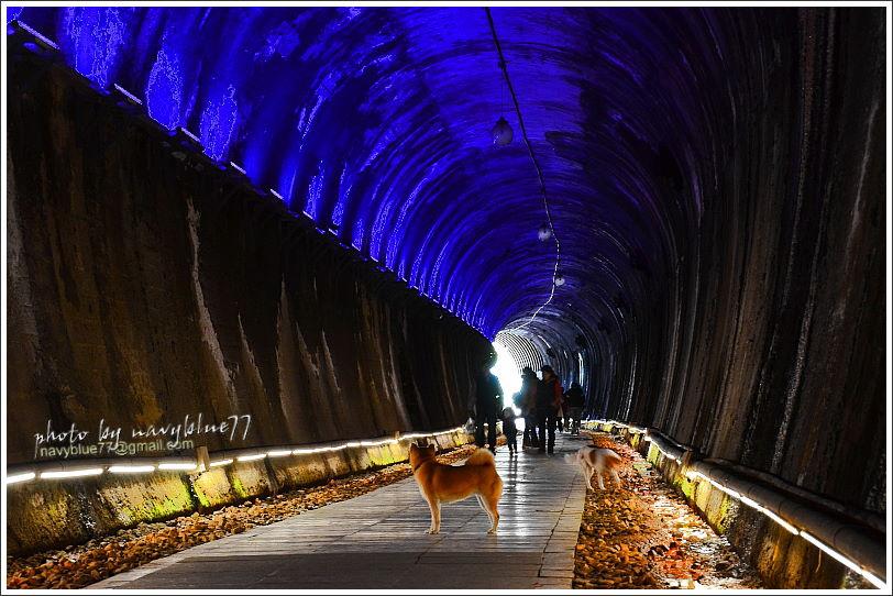 [苗栗.苗栗市]功維敘隧道的穿越時空漫步.穿梭七彩光影的星光大道